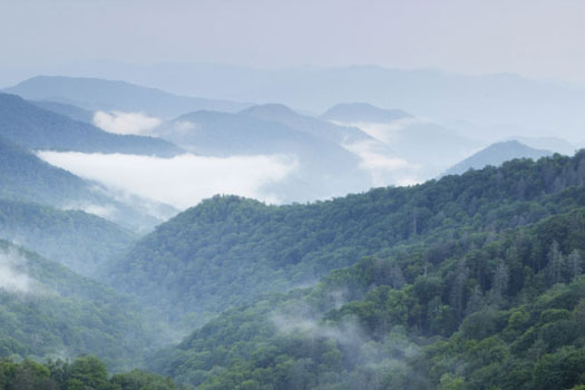 A photo of the Smoky Mountains on a foggy day.
