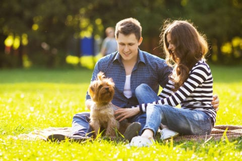 Couple having a picnic with their dog.