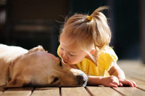 Little girl kissing a dog on the deck of a cabin.
