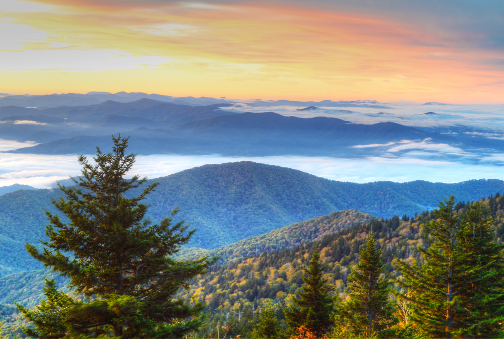 Are Your Dates View Of The Smoky Mountains