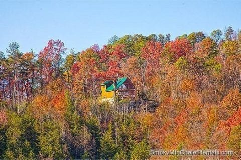 The Serenity cabin rental surrounded by beautiful fall colors in the mountains.