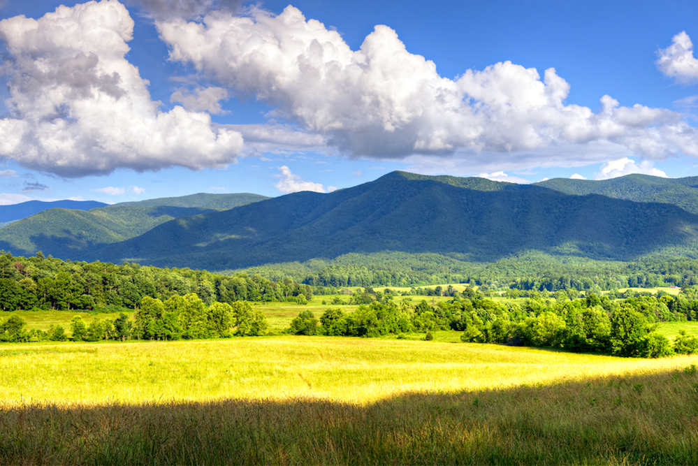 scenic view of the mountains in cades cove
