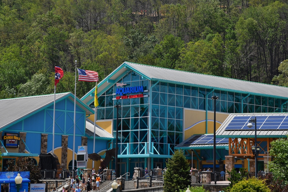 4 Fun and Exciting Attractions in Gatlinburg TN for Families to Enjoy Together