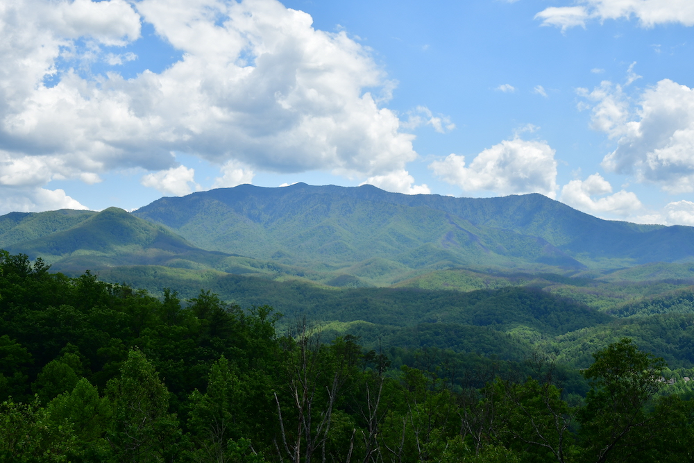 Top 4 Activities You Should Do in the Great Smoky Mountains