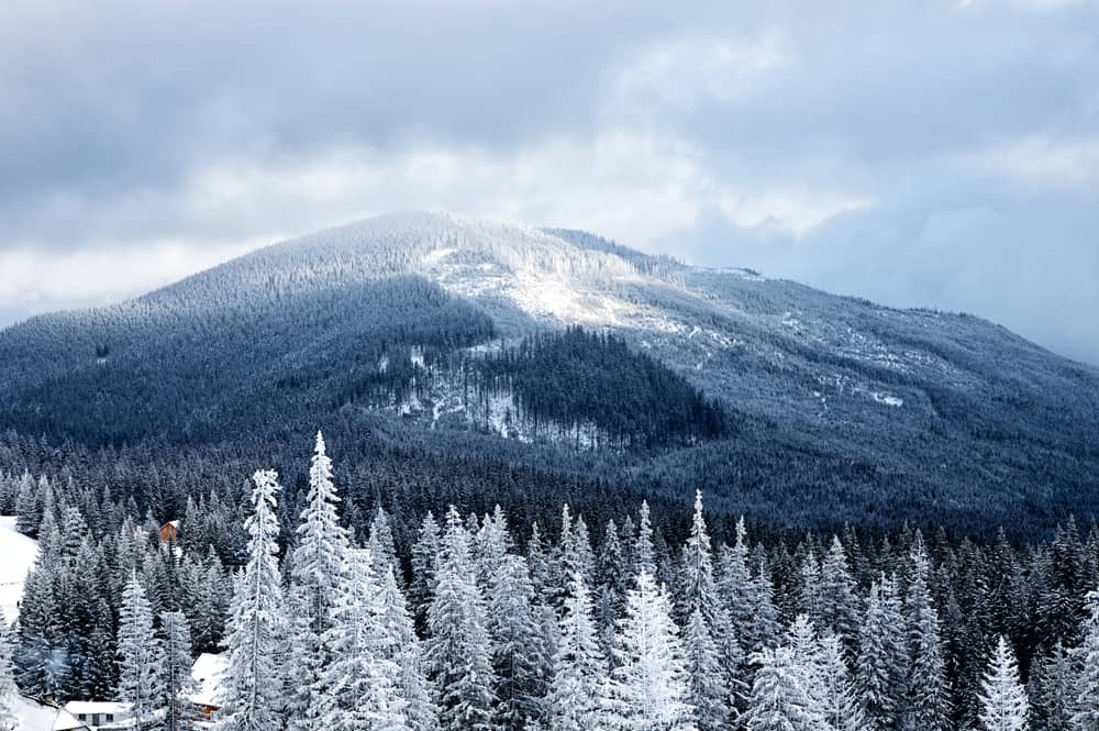 5 Reasons to Book a Winter Trip in Our Cabin Rentals in the Smokies
